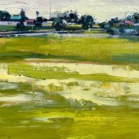 Swamp Field