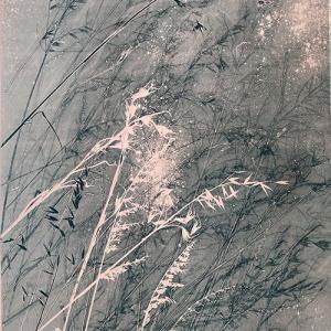Pink Grasses III (A03)