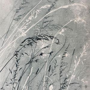 Tall Grasses (A05)