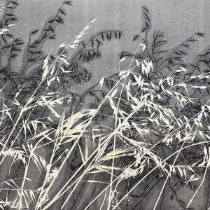 Kasteelberg Grasses VI (A07)
