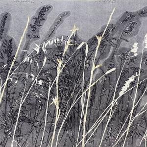 Kasteelberg Grasses II (A09)