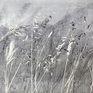 Kasteelberg Grasses III (A10)