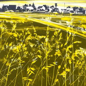 Urban Grasses I (B01)