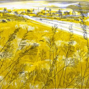 Urban Grasses IV (B04)