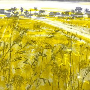 Urban Grasses VI (B06)