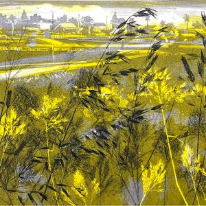 City Grasses II (B08)