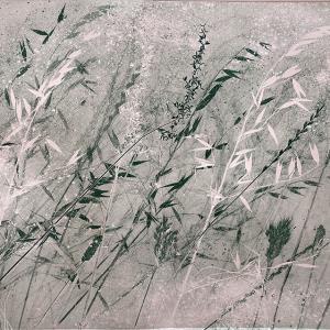 Dusky Grasses IV (B15)
