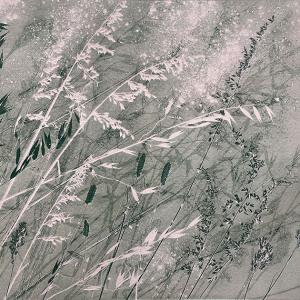 Dusky Grasses X (B21)