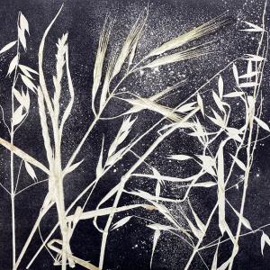 Summer Grasses IV (C04)