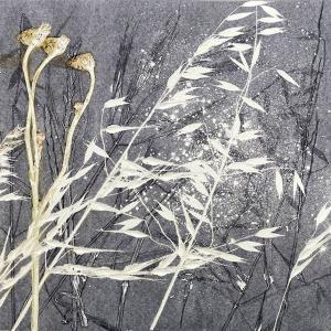 Summer Grasses VIII (C07)
