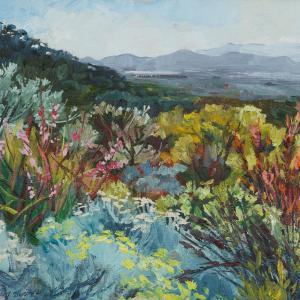 Kirstenbosch View