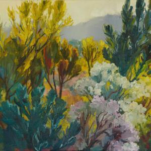 Fynbos Undergrowth