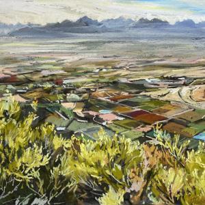 Morning Valley
