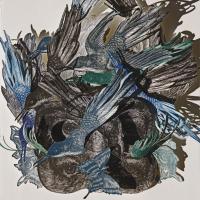 Imaginarium: Bird of Paradise