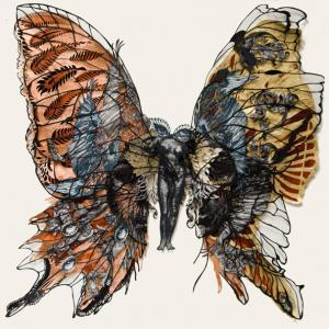 Butterfly II Construction