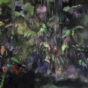 Cecilia ferns 1