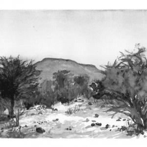 Hill at Mogonye