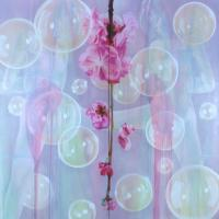 Blossoms, Bubbles and Bondage II