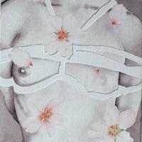Sakura-san with Almond Blossoms